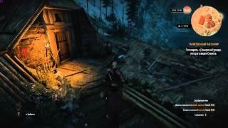 The Witcher 3: Wild Hunt - Таинственный пассажир