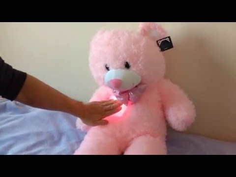 Light Up Teddy with Music
