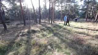 Natuurbegraven in Het Nationale Park De Hoge Veluwe