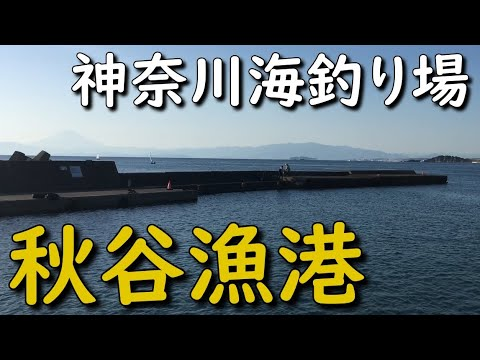 神奈川釣り場 秋谷漁港 横須賀 SPOT MANCING PELABUHAN AKIYA PORT YOKOSUKA JAPAN