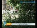 Тело недоношенного ребёнка обнаружили по дворе дома в Усолье-Сибирском