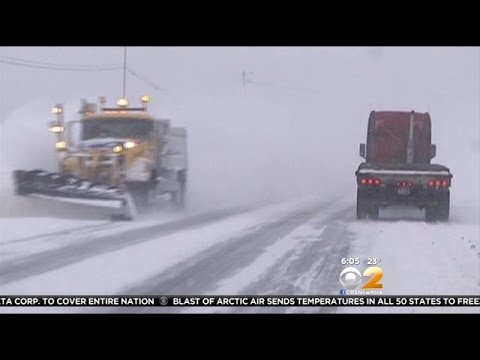 Buffalo Buried Under Six Feet of Snow