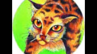 Пятнистая Звезда коты-воители