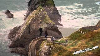 You must visit Dingle Ireland before you die