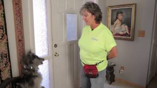 How To Get Your Dog To Start Barking At People At The Front Door : Dog Training & Care