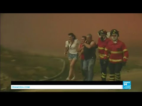"Portugal Fires: over 60 killed in ""biggest tragedy of human life the country has witnessed in years"""
