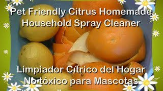 Pet Friendly Citrus Household Cleaner Spray Recipe / Limpiador Casero Mascotas