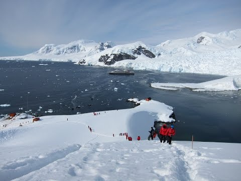 Cruising Antarctica: What to Expect when Exploring the White