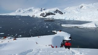 Cruising Antarctica: What to Expect when Exploring the White Continent