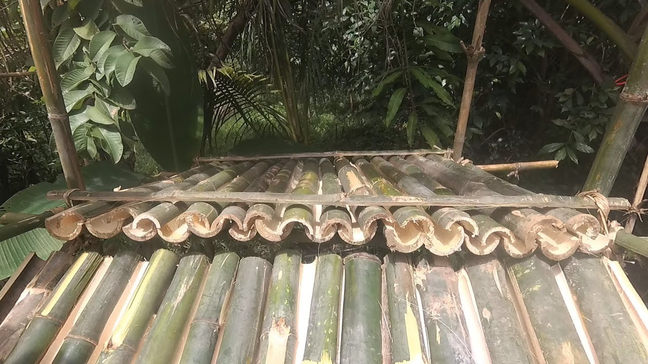 Primitive Technology Bamboo Roof Shelter Youtube