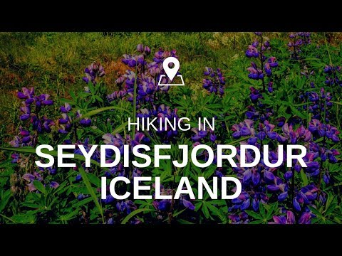 The one with the reasons why I love Iceland