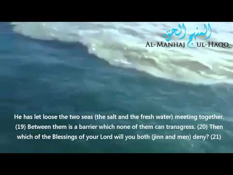 Verses from the Quraan About the Two Rivers That Meet But Don't Mix
