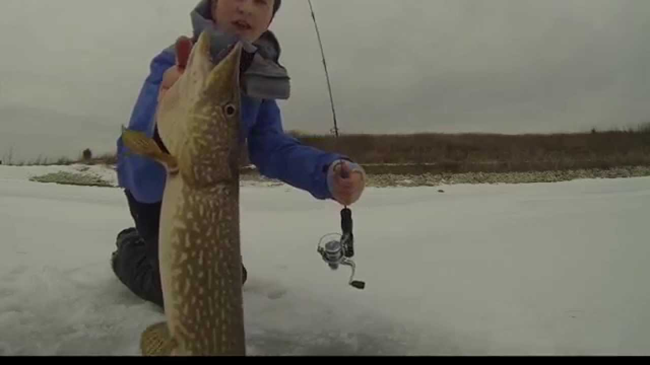 Winter time ice fishing bass pike and gills youtube for Ice fishing for bass