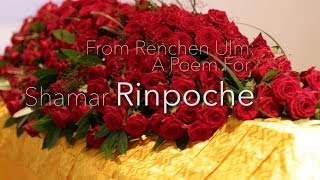 from renchen ulm a poem for shamar rinpoche
