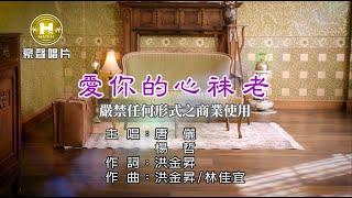 唐儷vs楊哲-愛你的心祙老【KTV導唱字幕】1080p