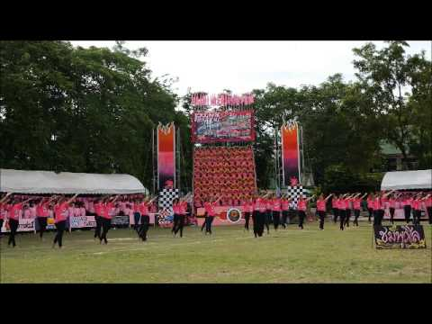 Pink  Racing  sport's day