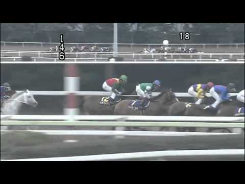 2012 東京スプリング盃(フジノ...