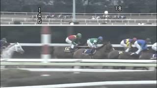 2012 東京スプリング盃(フジノウェーブ)