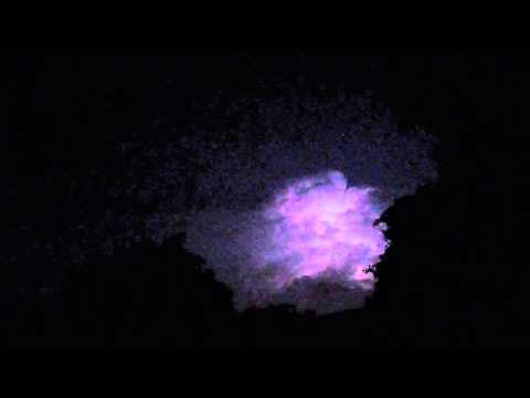Nature's Sights and Sounds - Hot Summer Night
