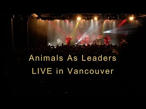 Animals As Leaders Full Concert