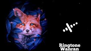 Randall Wahran Ringtone | RGB split avve player template | new avve player template 2021
