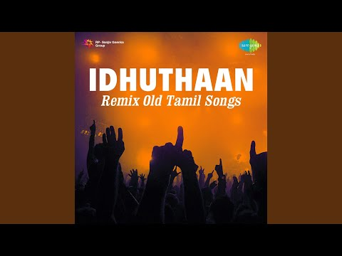 Chithaadai Kattikittu (Remix)