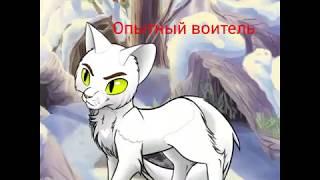 Коты-Воители~Мои выдуманные персонажи~ Часть 1