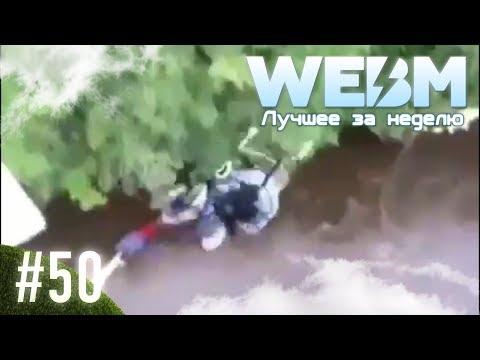 Dank WebM Compilation #50