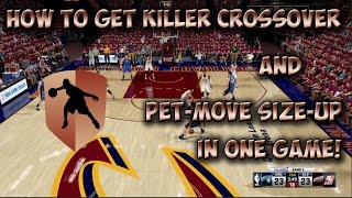 How to Get Pet Move Size Up + Killer Crossover Badges | Ankle Breaker Badges | NBA 2K16