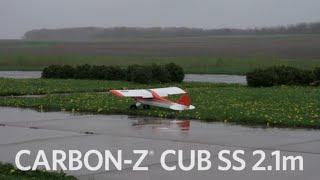 Load Video 1:  Sport Cub S RTF and BNF with SAFE® Technology by HobbyZone