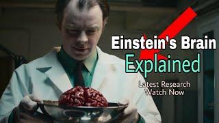 Einstein Brain vs Normal Brain | Surprising Fact Revealed