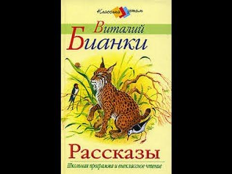 Снежная книга. Бианки В.В. Аудиорассказ
