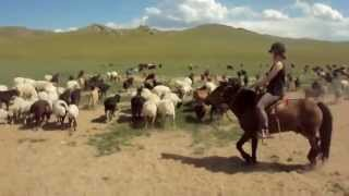 Séjour Mongolie UCPA