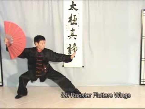 Taiji: Tai Chi Kung Fu Fan II (Beauty of the Suns) Xiyangmei