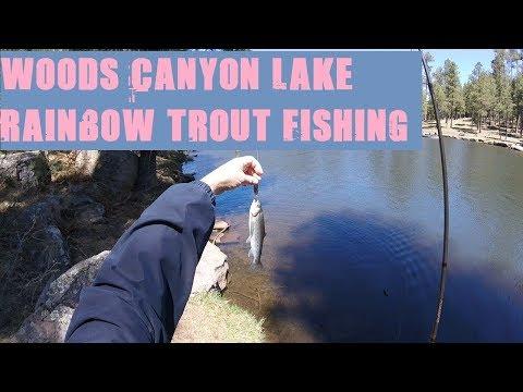 Arizona Fishing for Rainbow Trout at Woods Canyon Lake