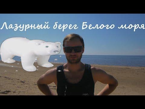 Отдых на Белом море. Встреча с медведями, тюленями и зайцем