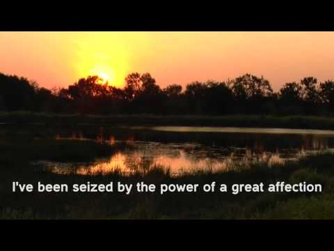 The Power of a Great Affection - Andrew Peterson - Lyrics