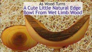A Cute Little Natural Edge Bowl From Wet Limb Wood