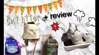 Cat litter set up + REVIEW