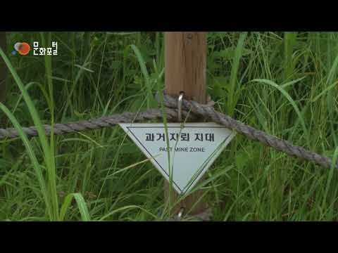 [Korean Culture 100] 88 비무장지대, Demilitarized Zone, DMZ, From Land of Tragedy to Land of Hope