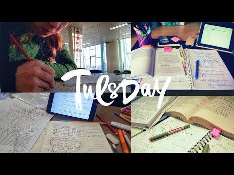 Как Я Готовлюсь к ЕГЭ //Библиотека, вебинары и заказ с Лабиринта//Один день из моей жизни