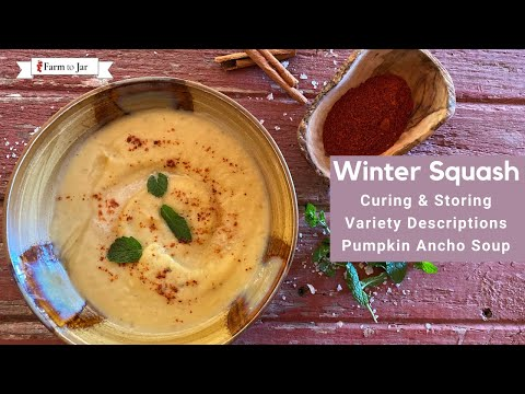 Winter Squash: How to cure & store; heirloom variety descriptions; pumpkin ancho soup