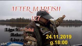 After Marfish # 127 Powieść - Król Myśli, Szczupaki, dorsze, Liga Marfisha, Live czat