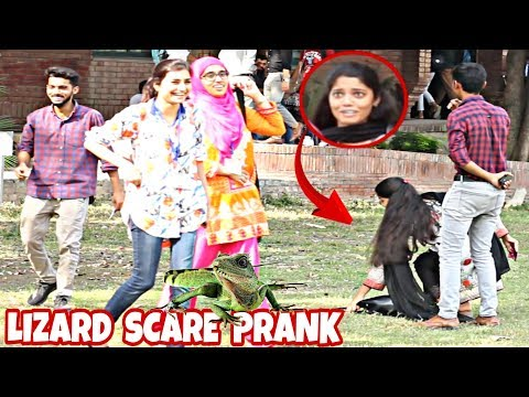 Lizard Prank On Cute Girls | Prank In Pakistan | FCC