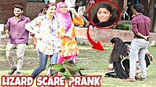 Lizard Prank On Cute Girls | Prank In Pakistan | FCC