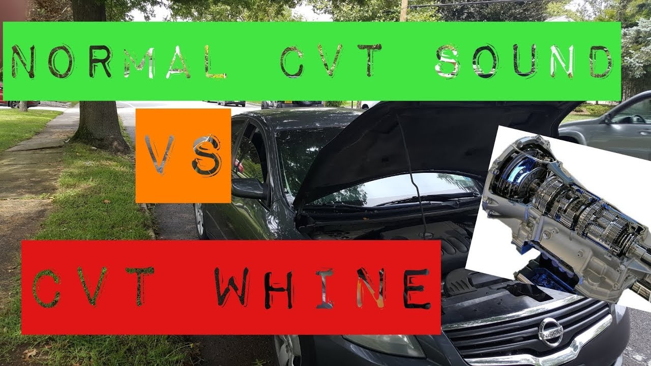 1 5T - CVT Whine | 2016+ Honda Civic Forum (10th Gen) - Type
