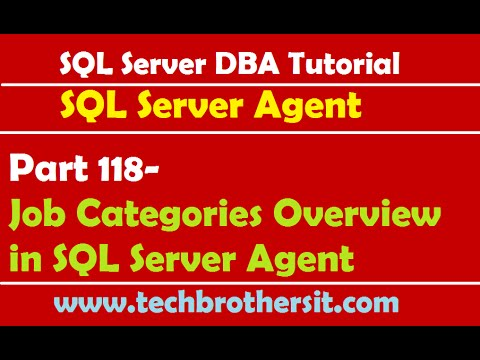 Sql server dba tutorial 118 job categories overview in sql for Consul server vs agent