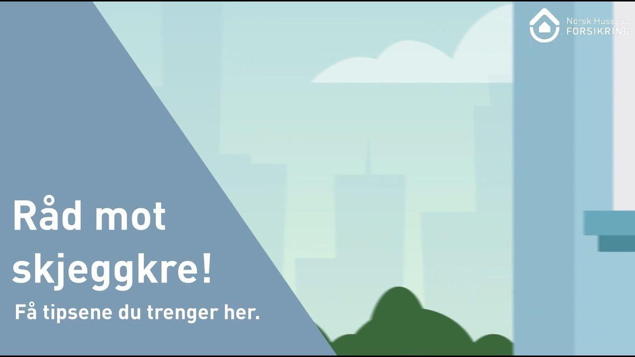 norsk hussopp forsikring