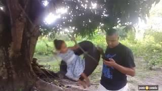 viciado  no zap zap.😅😅😅 vídeo engraçado e curto para status do watzzap