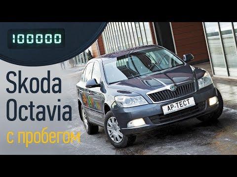 Skoda Octavia б/у: на что обратить внимание при покупке?